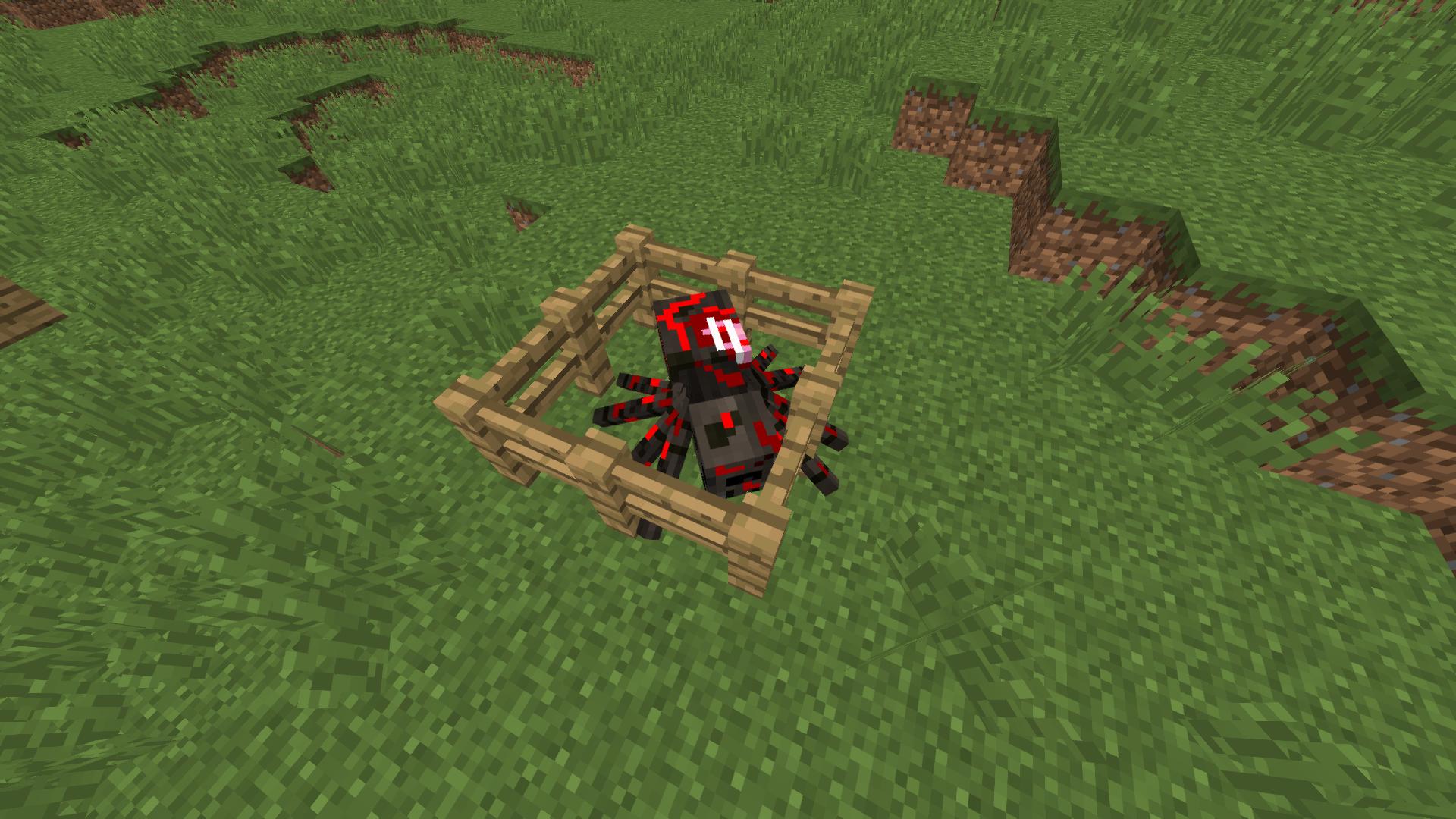 Zombie Spider