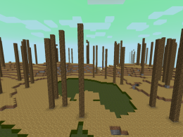An Image of the Biome.