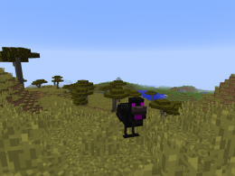 Picture of the Ender Chicken.