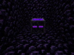The Enderum - A new age of respawning