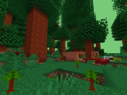 The Redwood Forest Biome