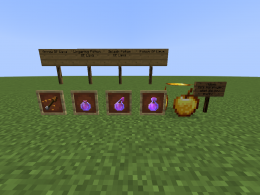 Items in the mod