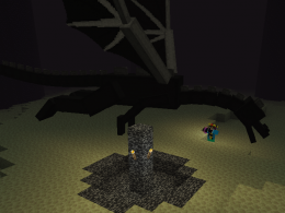 Guto010 Killing the Ender Dragon With The Marrom CellPhone