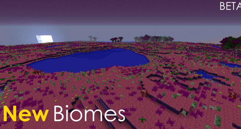 New Biome (theMushroomKingdom)