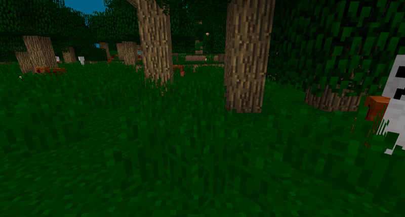 The Forest: Biome