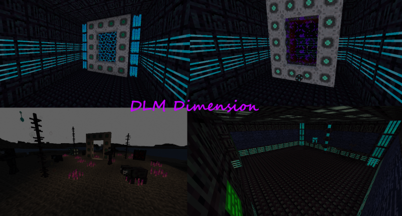 DLM Dimension