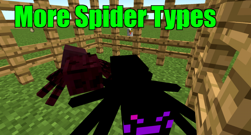 More Spider Types