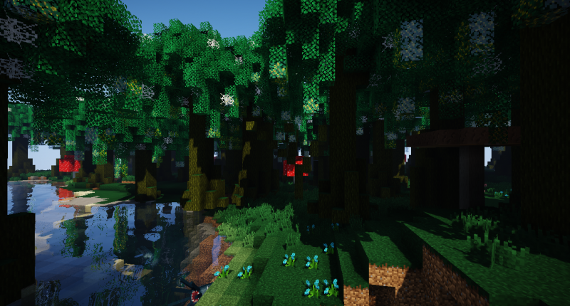 Weeping Witch Forest