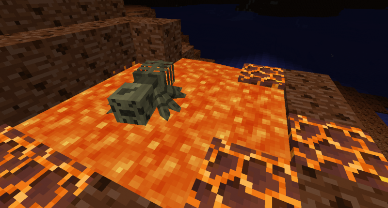 A lava lake found in the Spider's Den