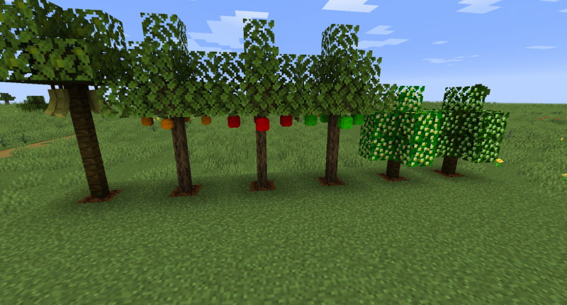 Fruit trees!