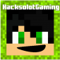 Profile picture for user HacksolotGaming