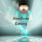 Profile picture for user AheeDude